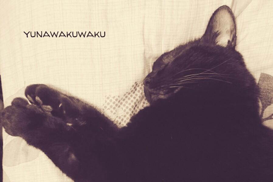 f:id:yunawakuwaku:20170401224016j:plain
