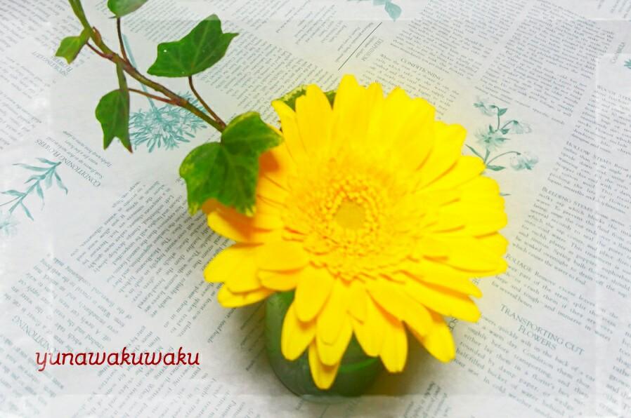 f:id:yunawakuwaku:20170409231138j:plain