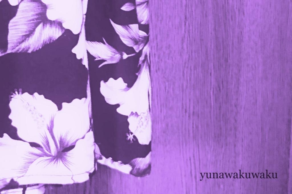 f:id:yunawakuwaku:20170622220401j:plain