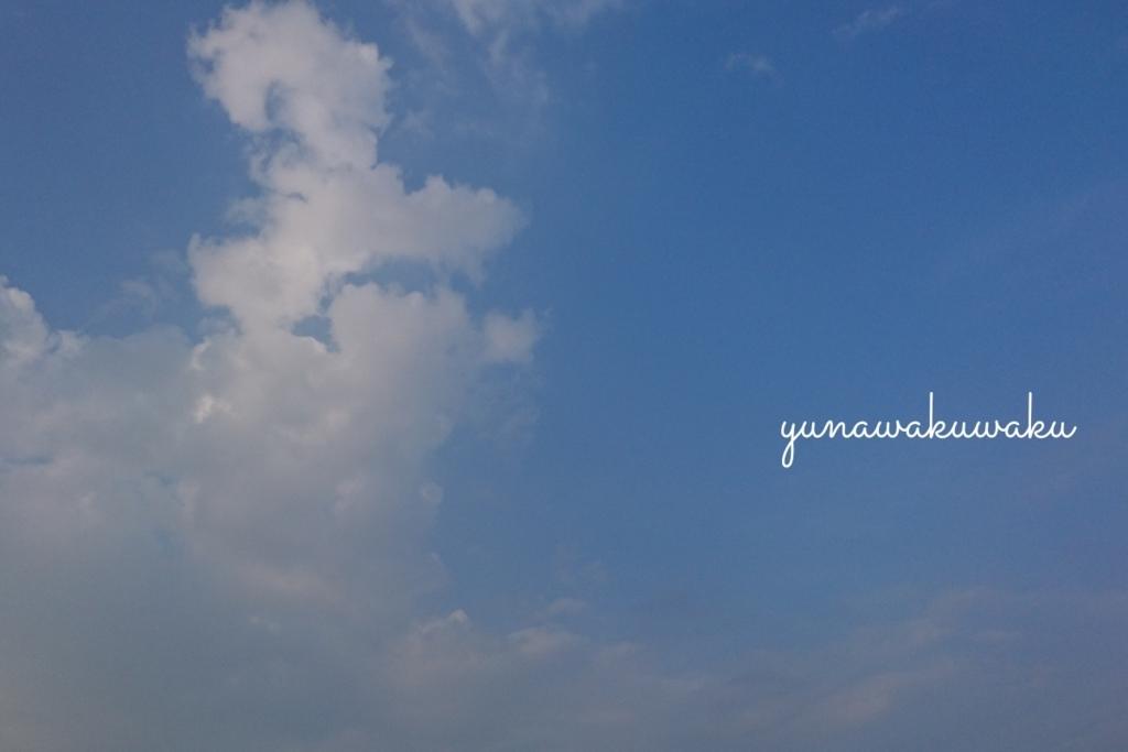 f:id:yunawakuwaku:20170713230552j:plain