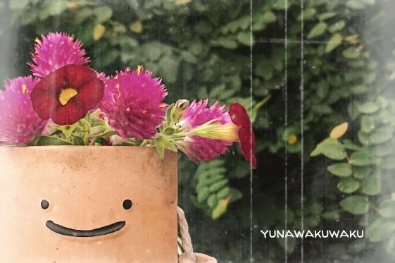 f:id:yunawakuwaku:20170919230610j:plain