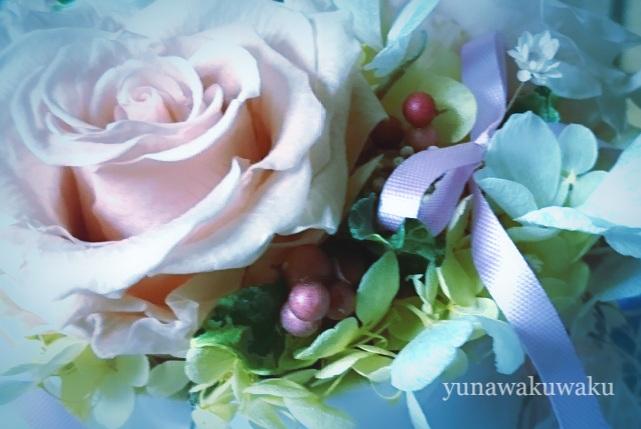 f:id:yunawakuwaku:20171107233539j:plain