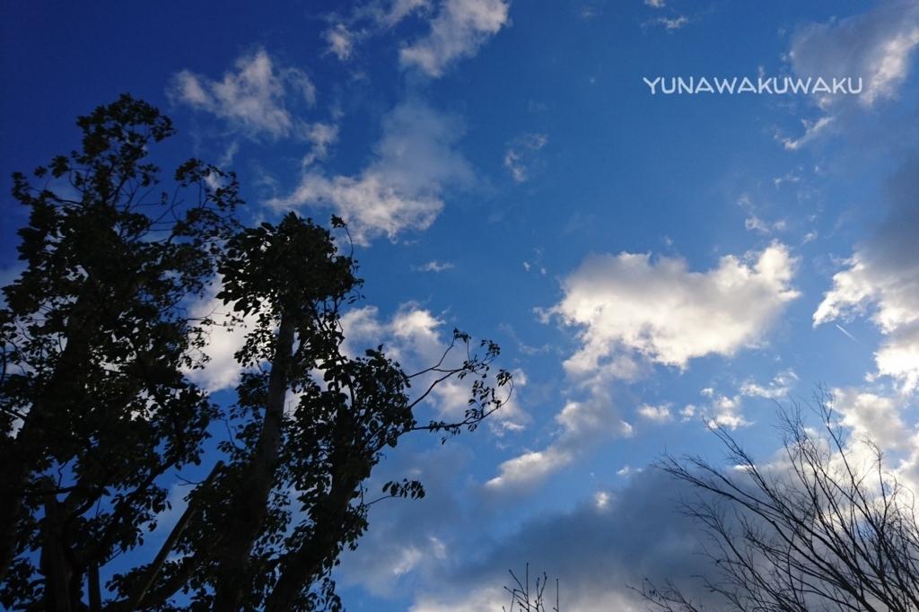 f:id:yunawakuwaku:20171227234315j:plain