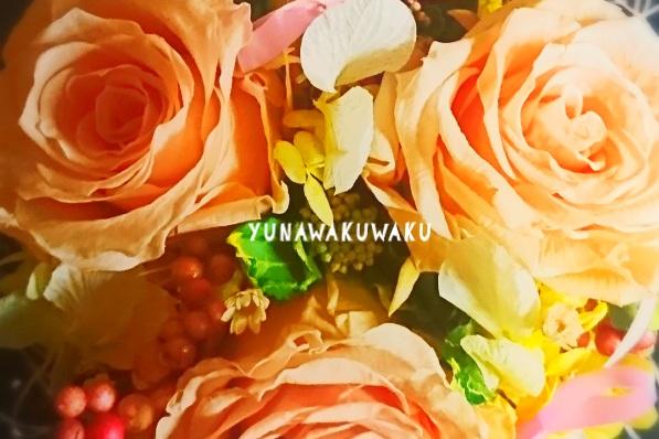 f:id:yunawakuwaku:20180128220446j:plain