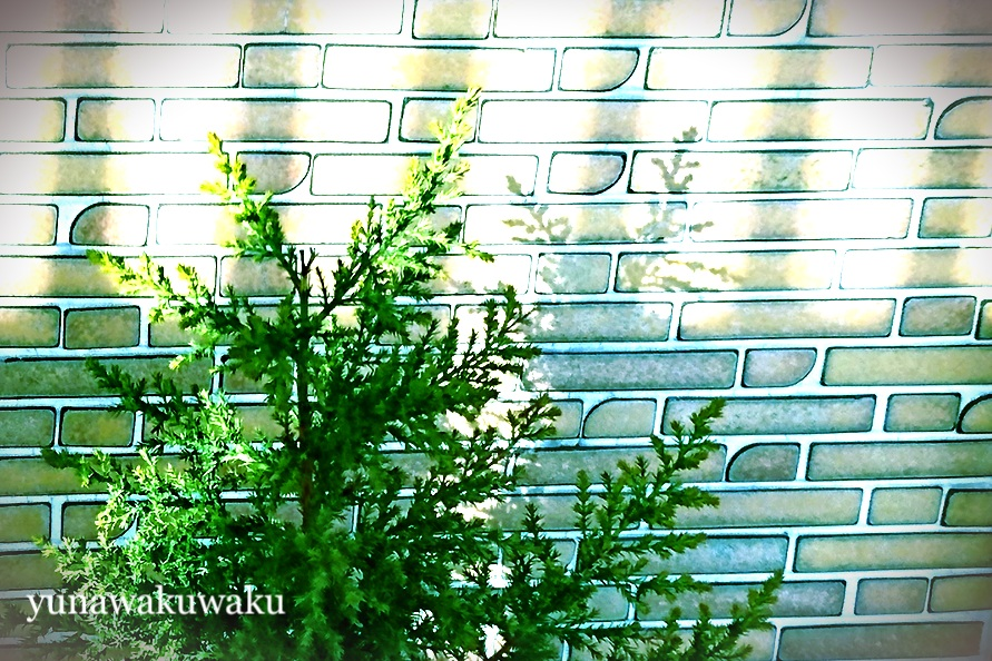 f:id:yunawakuwaku:20180213234708j:plain