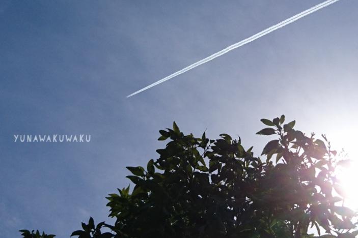 f:id:yunawakuwaku:20180412223242j:plain