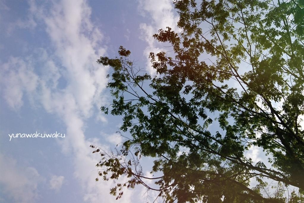 f:id:yunawakuwaku:20180427230148j:plain