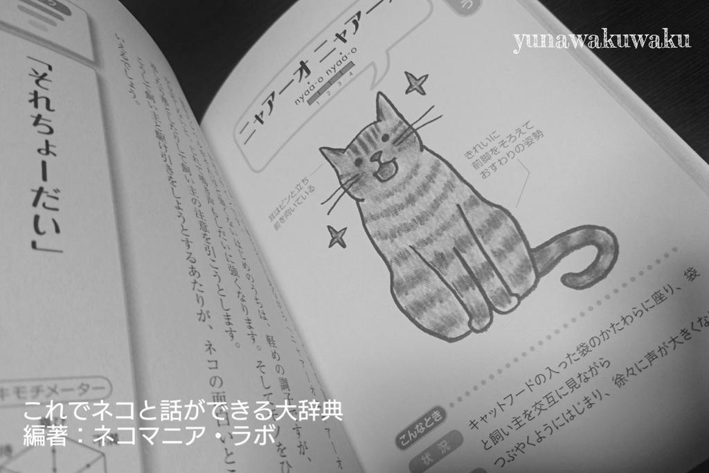 f:id:yunawakuwaku:20180927234422j:plain