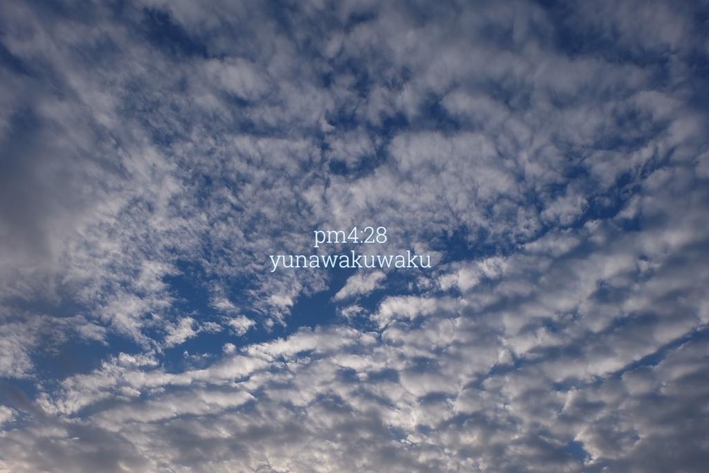 f:id:yunawakuwaku:20190104233002j:plain