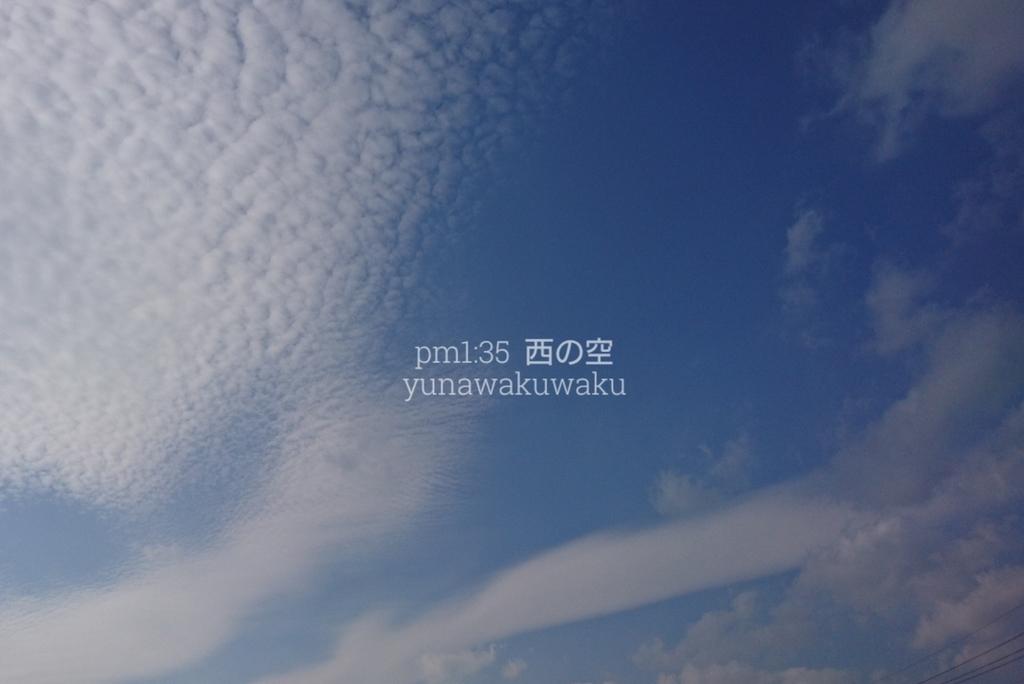 f:id:yunawakuwaku:20190108230339j:plain