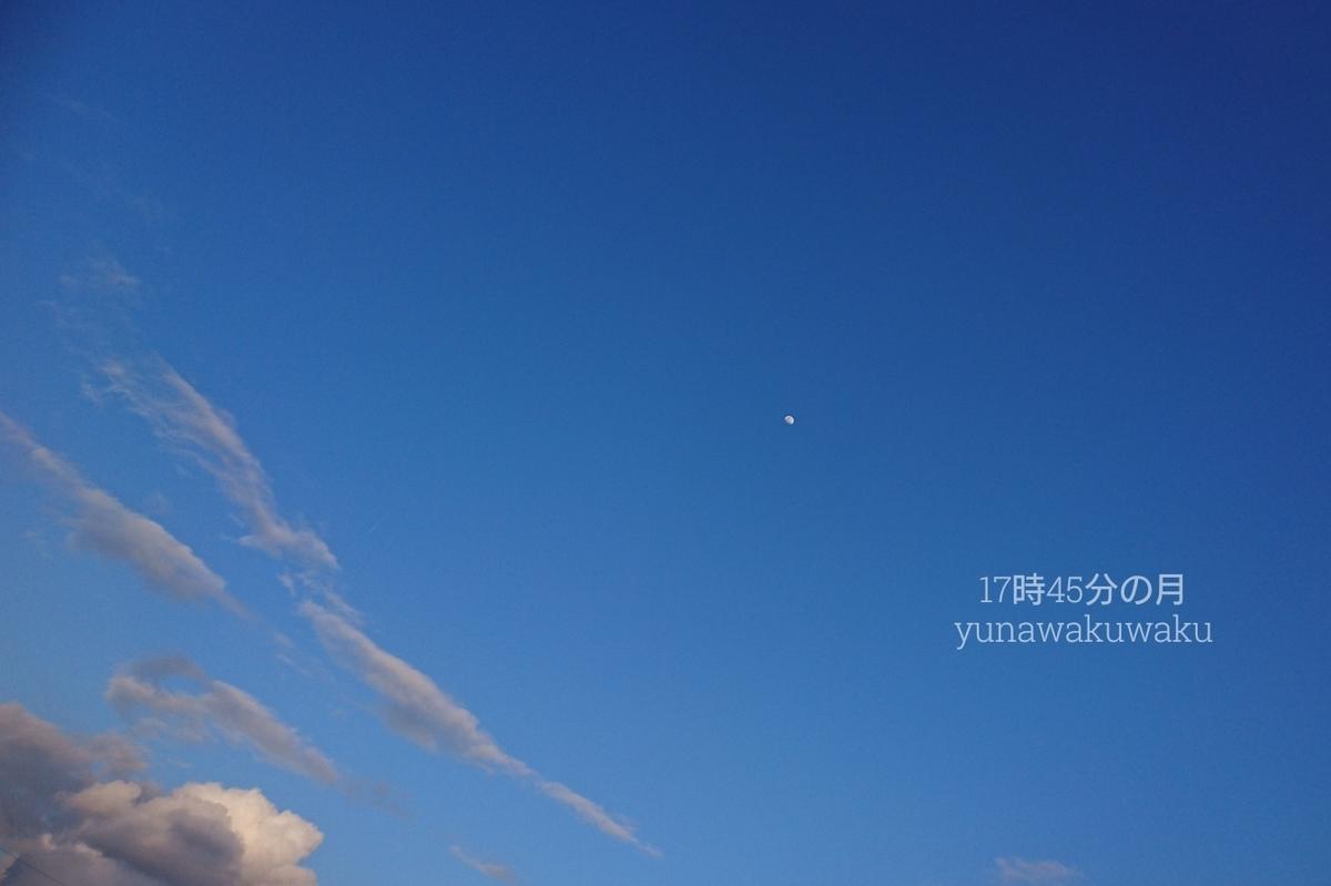 f:id:yunawakuwaku:20190317231339j:plain