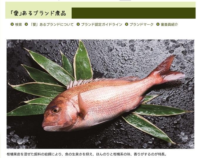 f:id:yunawakuwaku:20190404232259j:plain