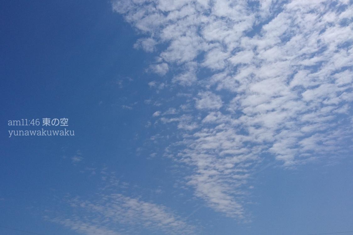 f:id:yunawakuwaku:20190409231441j:plain