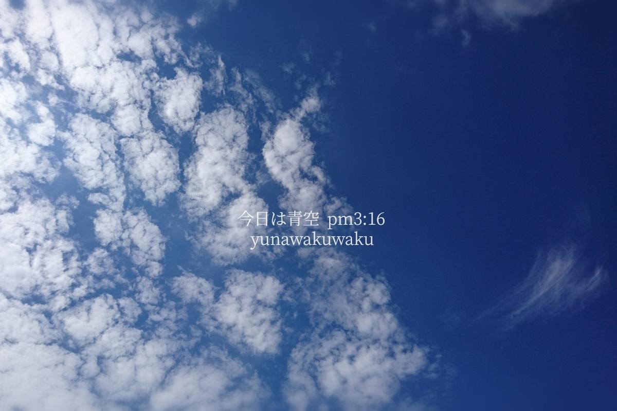 f:id:yunawakuwaku:20190724231859j:plain