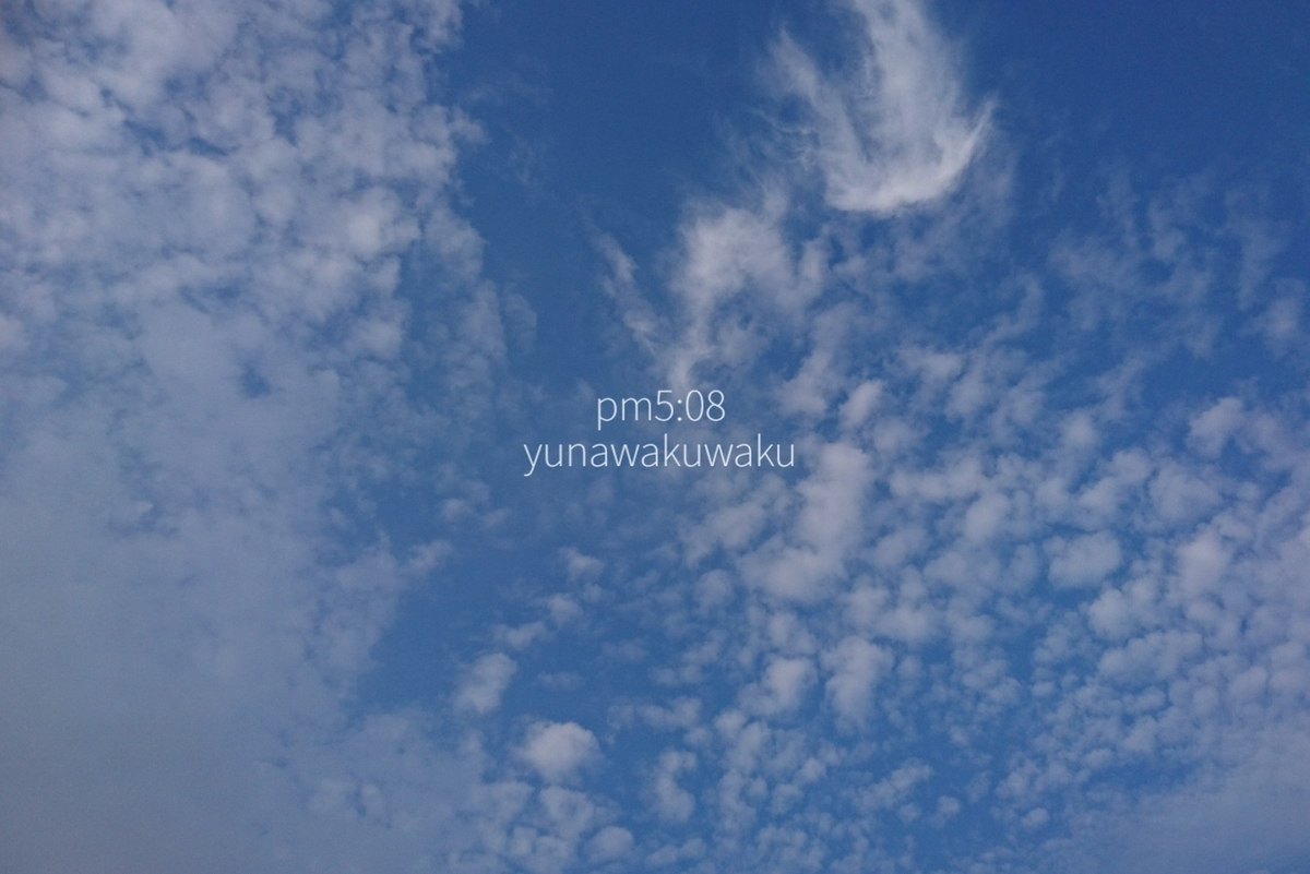 f:id:yunawakuwaku:20190818233326j:plain