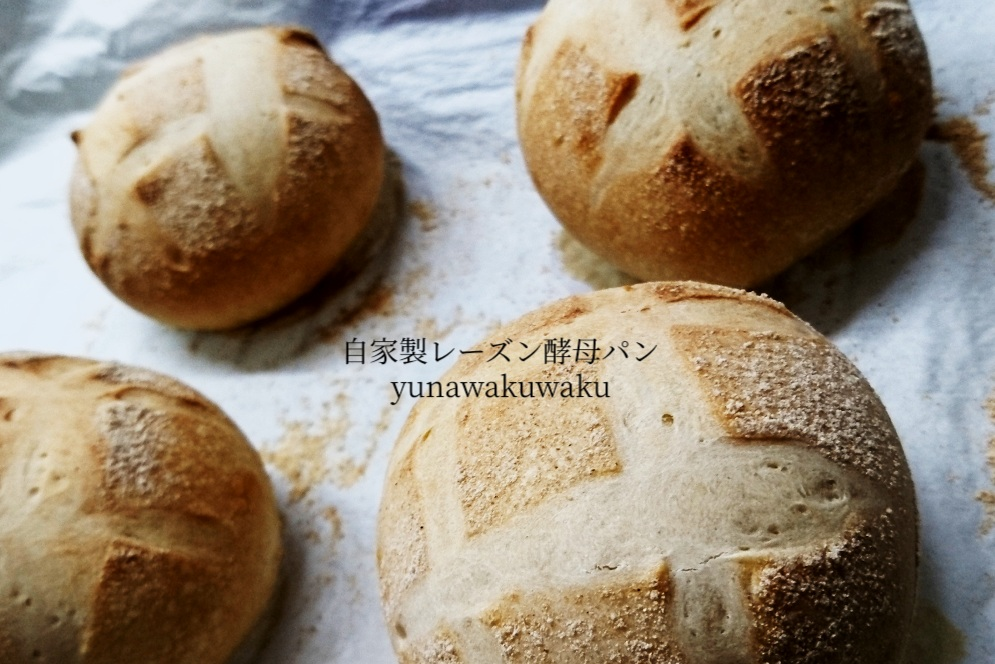 f:id:yunawakuwaku:20190824234841j:plain