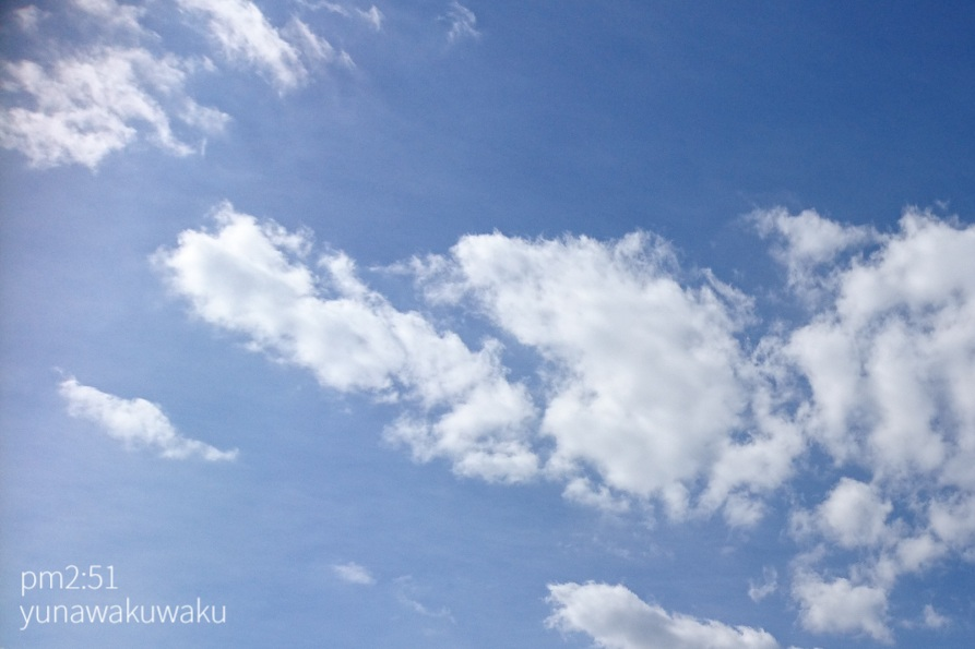 f:id:yunawakuwaku:20190919222341j:plain