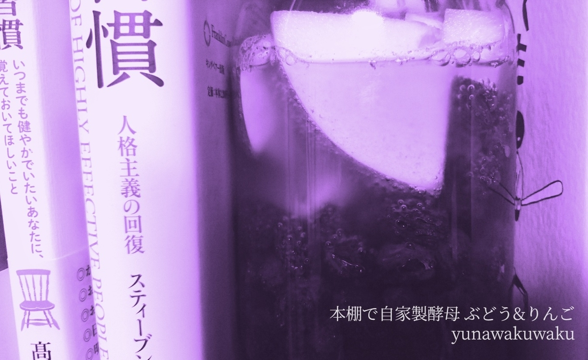f:id:yunawakuwaku:20191111234413j:plain