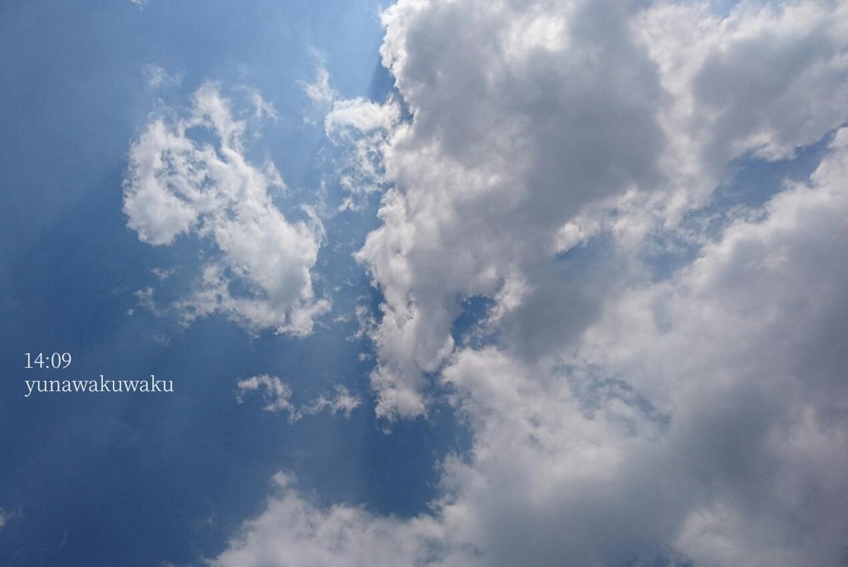 f:id:yunawakuwaku:20200529233016j:plain