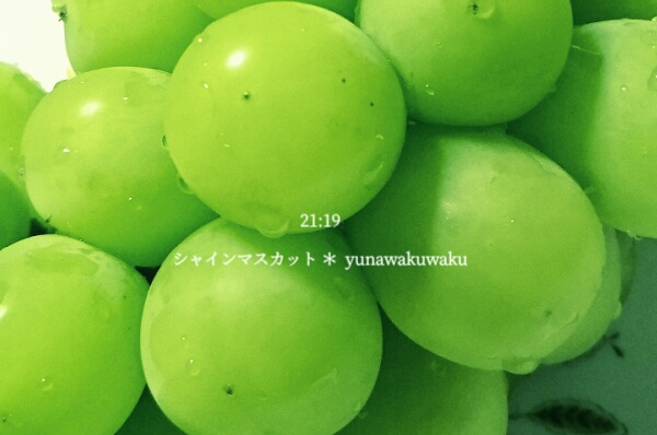f:id:yunawakuwaku:20200731232532j:plain