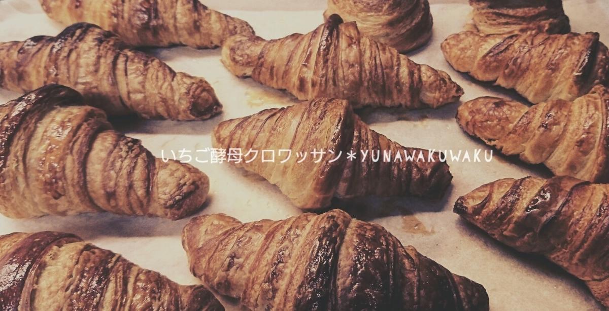 f:id:yunawakuwaku:20210513232502j:plain