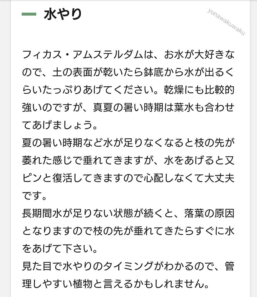 f:id:yunawakuwaku:20210513232746j:plain