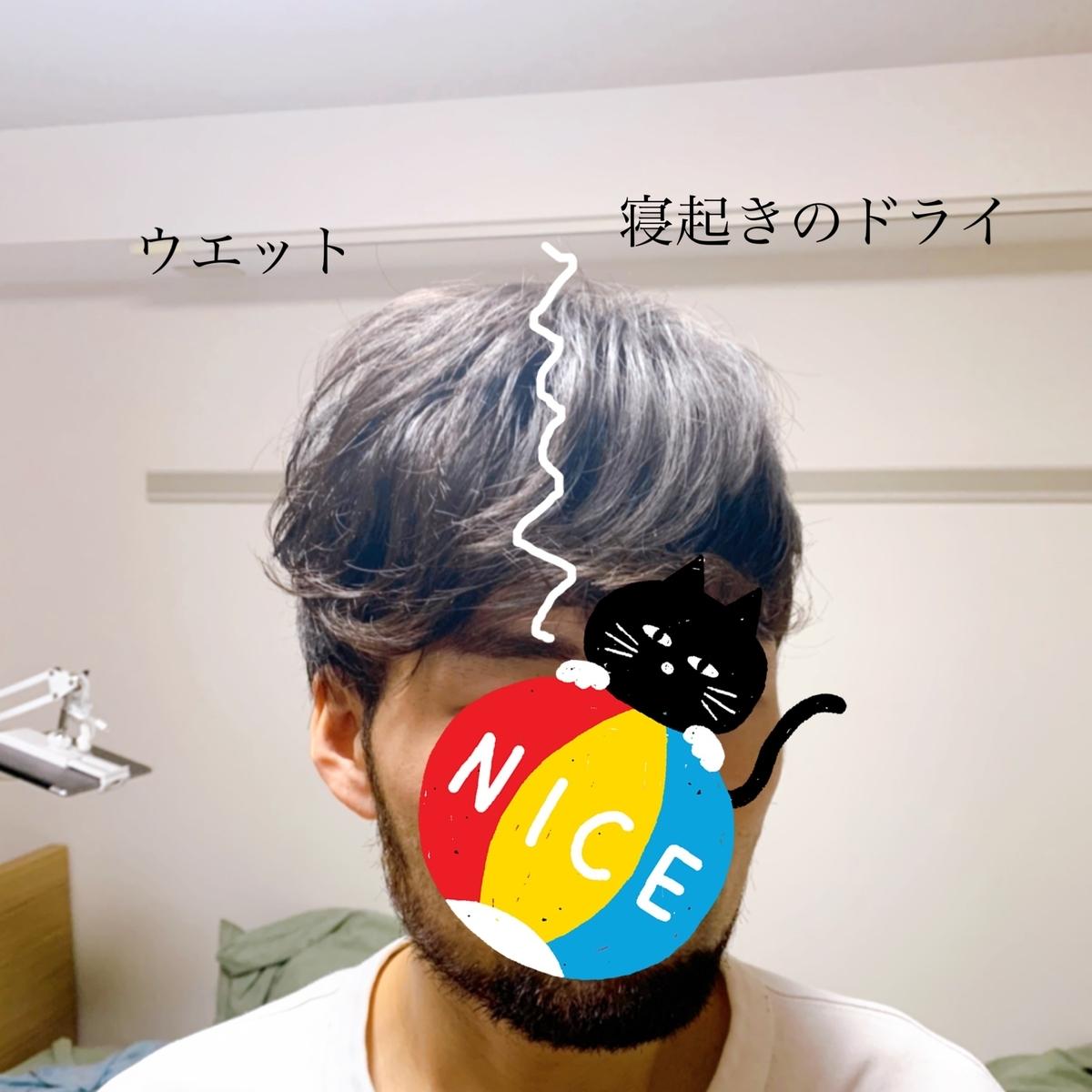 f:id:yuo3o5:20210118211404j:plain