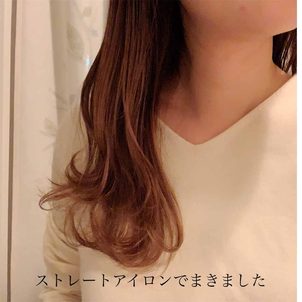 f:id:yuo3o5:20210119073836j:plain