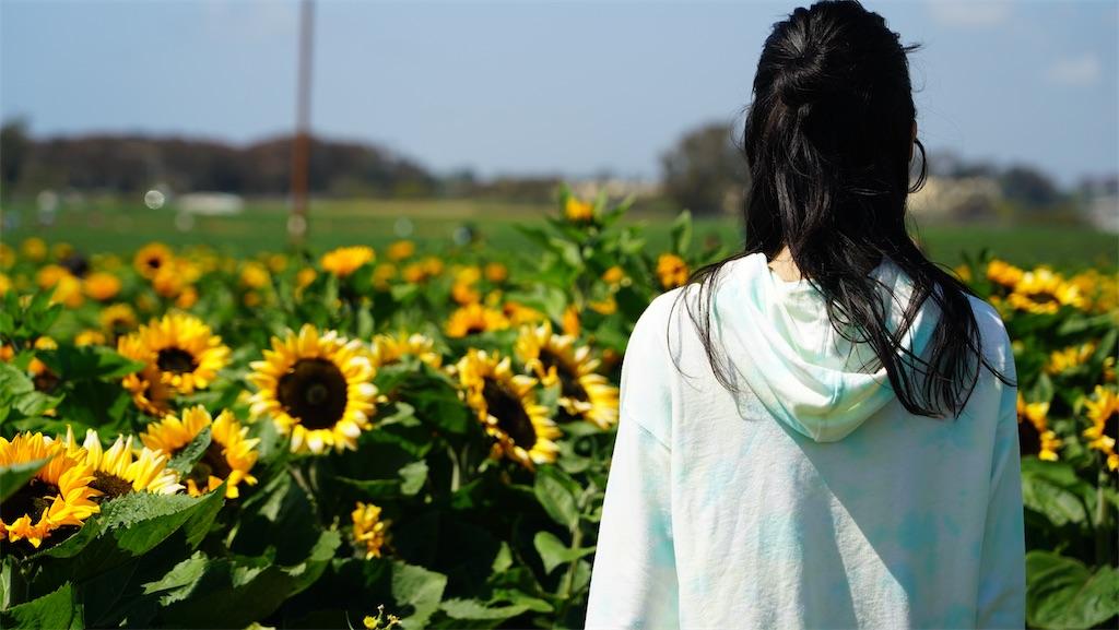 f:id:yura-mama:20210421061605j:plain