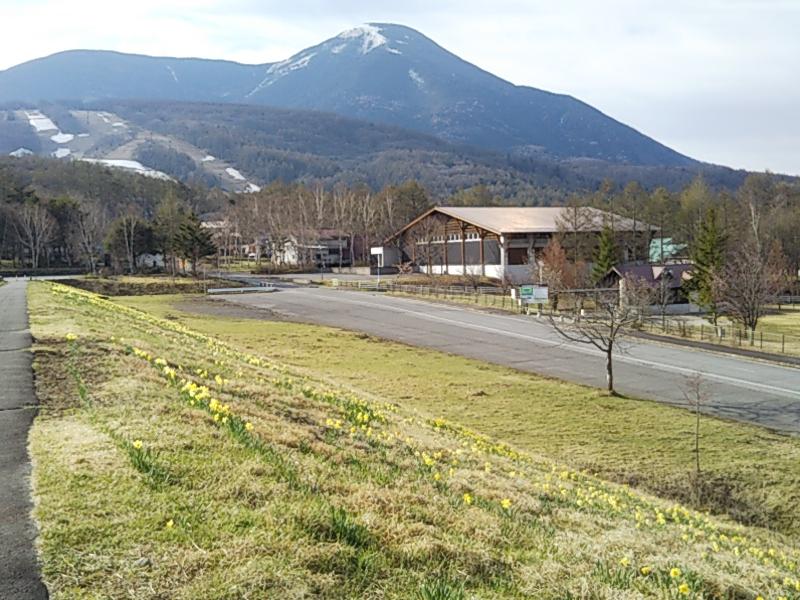 f:id:yurakuaruku:20190512062049j:plain