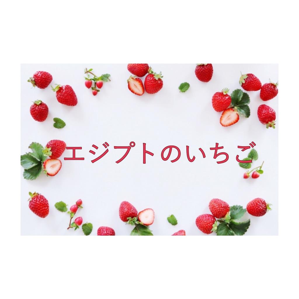 f:id:yuramekichan:20190512163249j:image