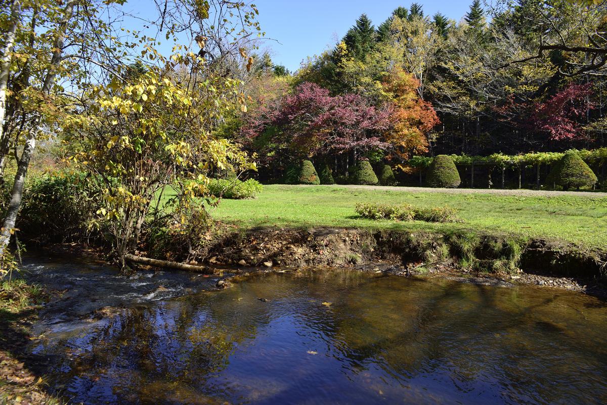 秋の西岡公園