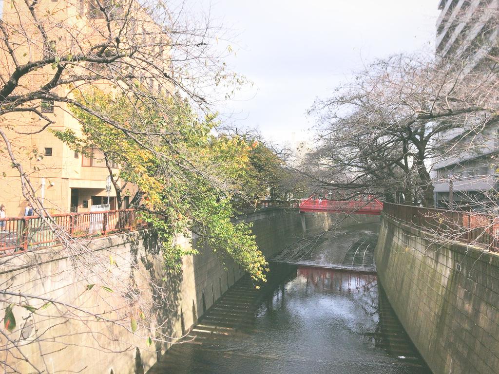 ANYTIMEFITNESSエニタイムフィットネス中目黒池尻大橋店