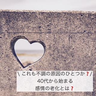 f:id:yurayura3desu4:20190705134616j:plain