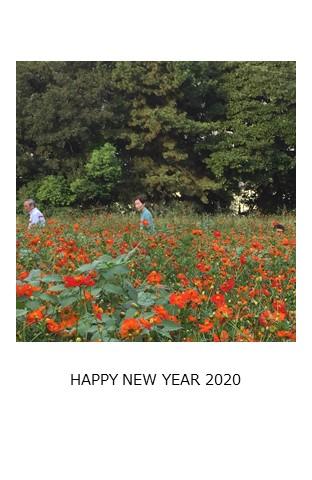 f:id:yurayura66:20200101200136j:plain