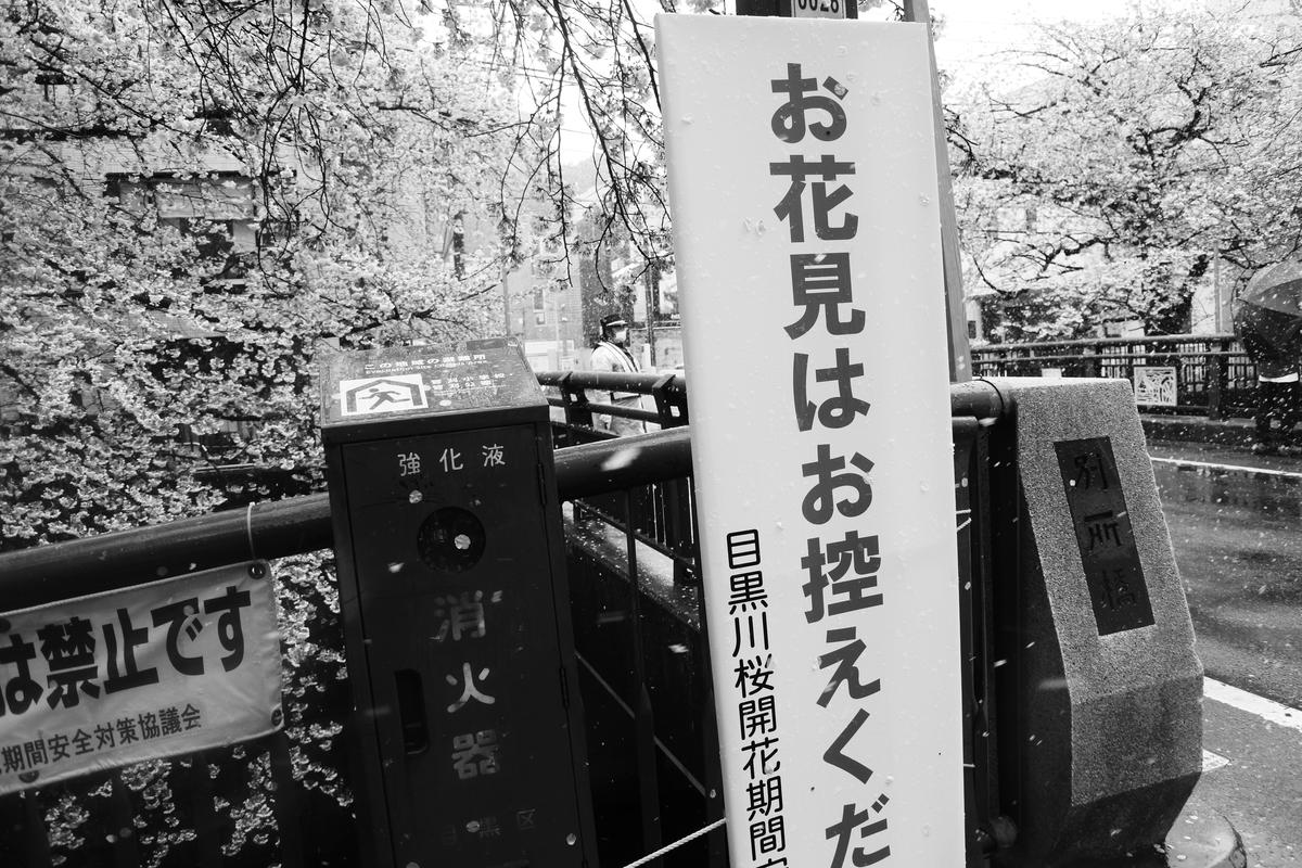 f:id:yurayura66:20200504120759j:plain