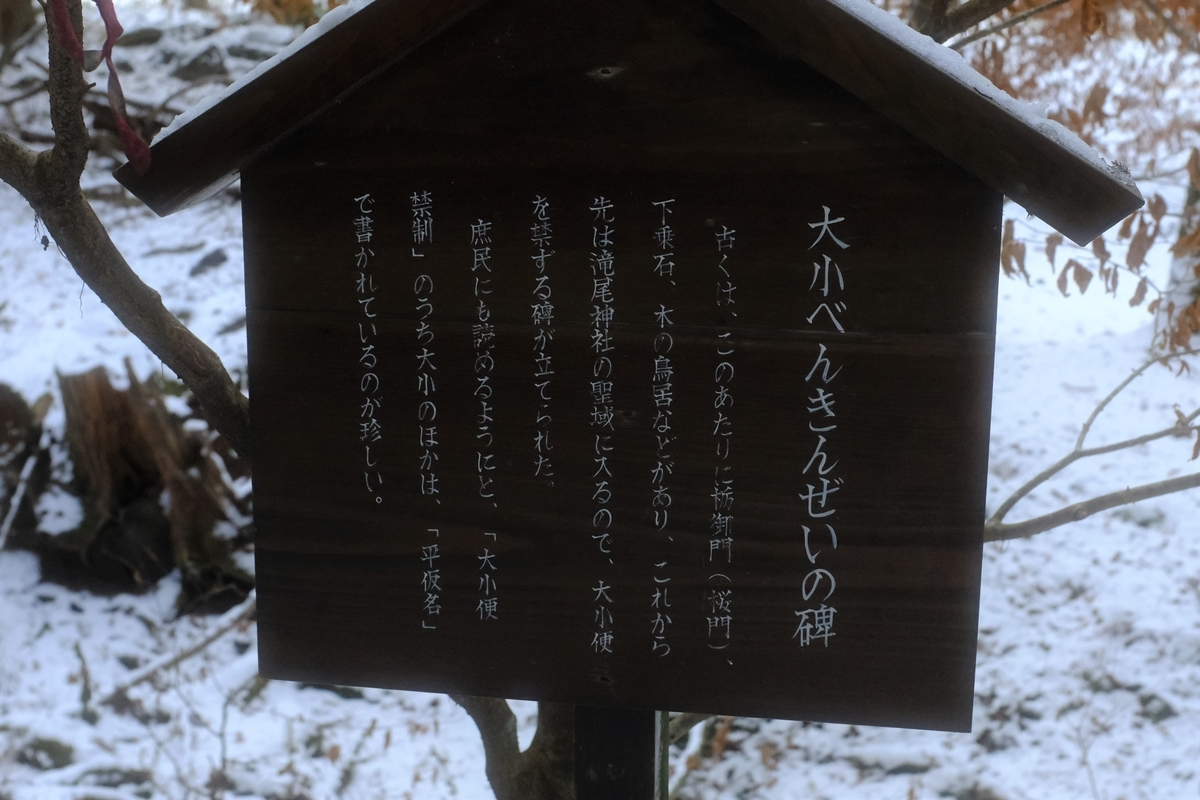 f:id:yurayura66:20210108223159j:plain
