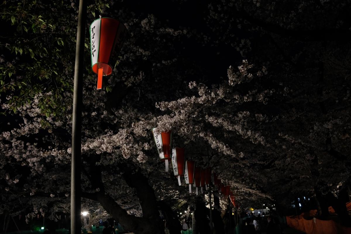 f:id:yurayura66:20210411171621j:plain