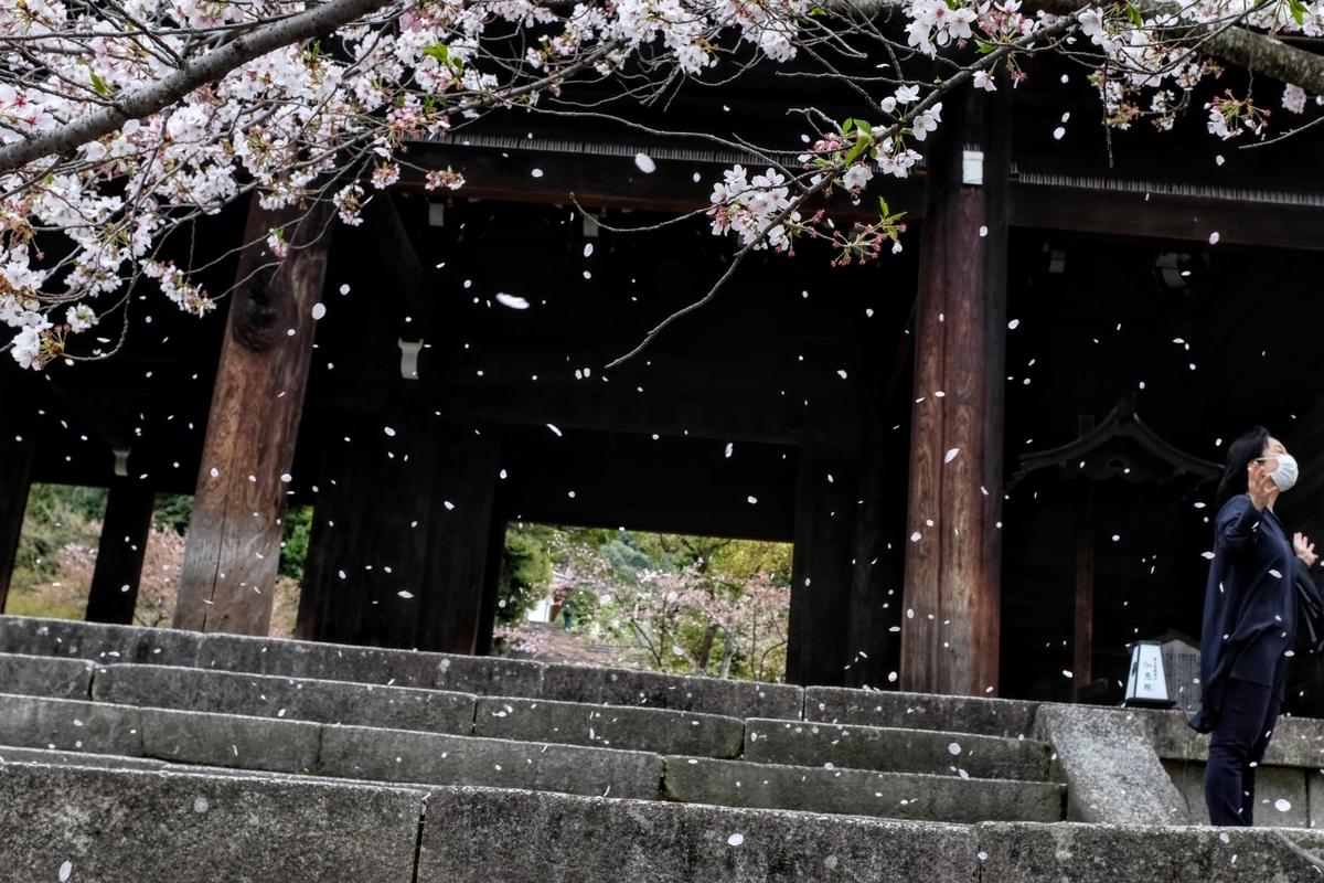 f:id:yurayura66:20210510230531j:plain