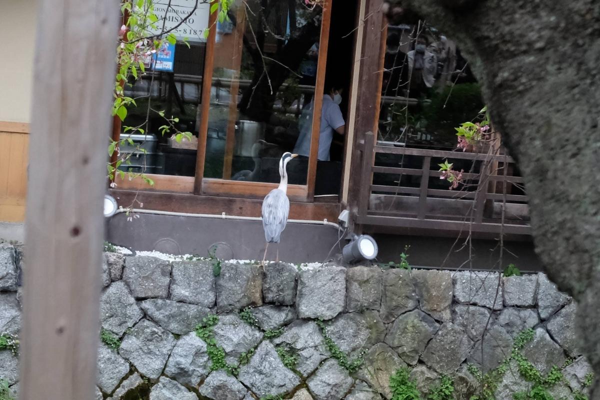 f:id:yurayura66:20210523171251j:plain