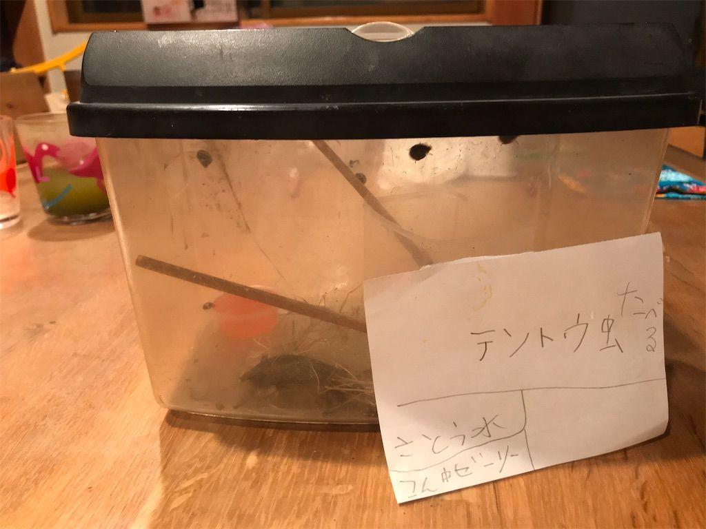 f:id:yuri-ko:20200303213325j:plain:w300