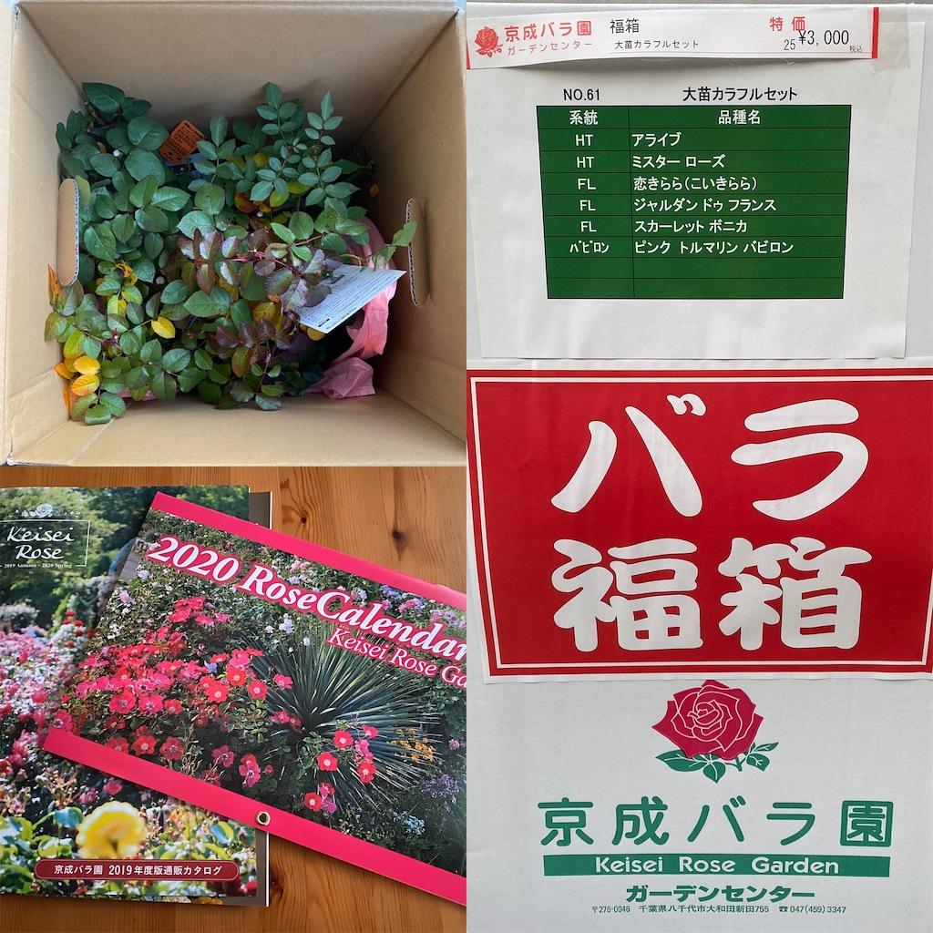 f:id:yuri-mami:20200103172835j:image