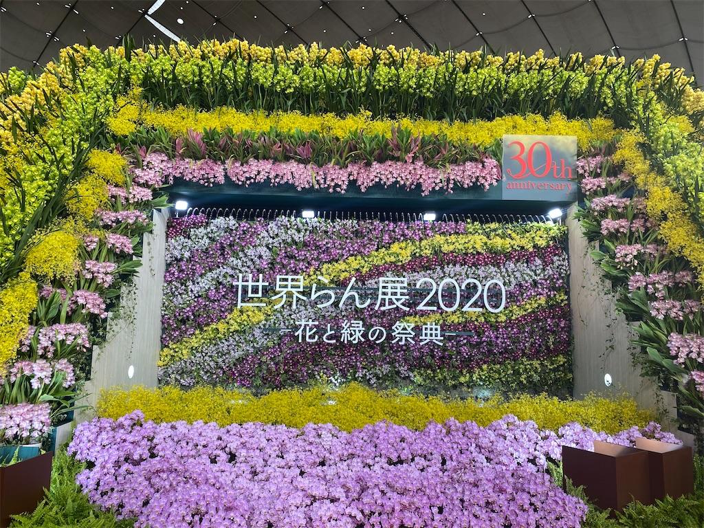 f:id:yuri-mami:20200214144123j:image