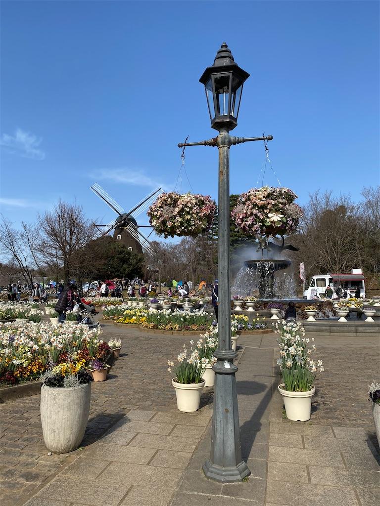 f:id:yuri-mami:20200324061531j:image