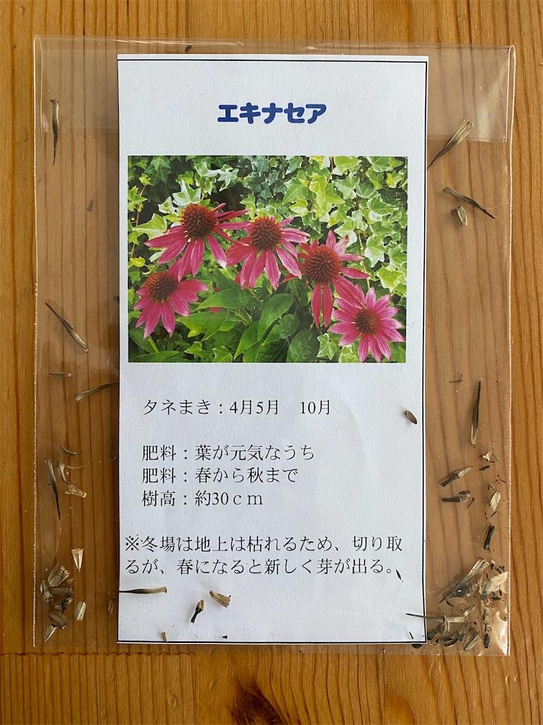 f:id:yuri-mami:20200404070901j:image