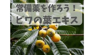 f:id:yuri-nkmr:20190714234121p:plain
