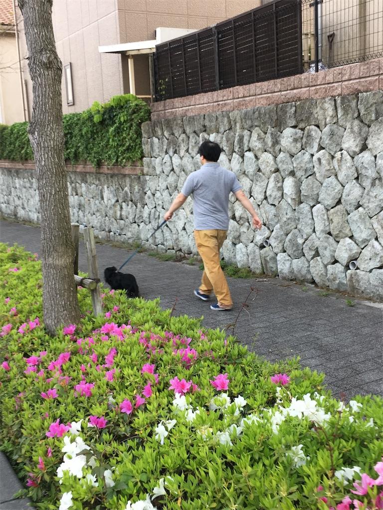 f:id:yuri-yamaguchi-48625160:20170502145158j:image