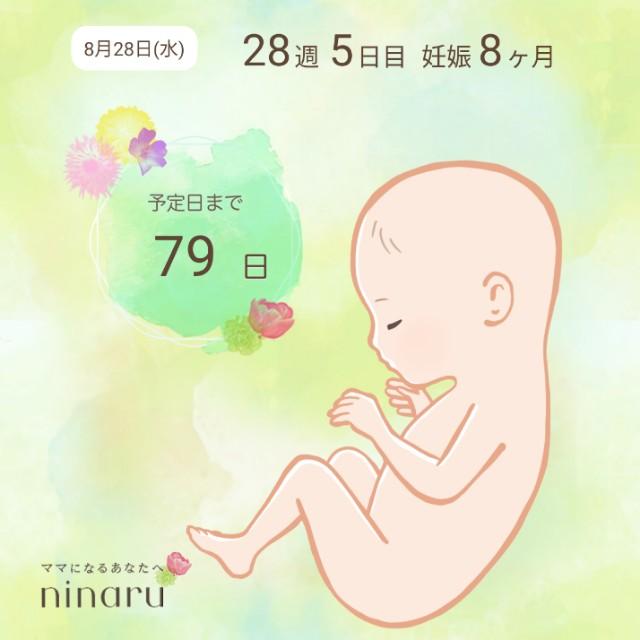 f:id:yuri0slowlife:20190828215455j:image