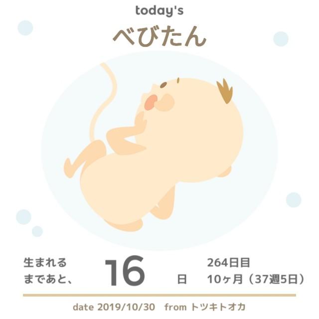 f:id:yuri0slowlife:20191101215429j:image