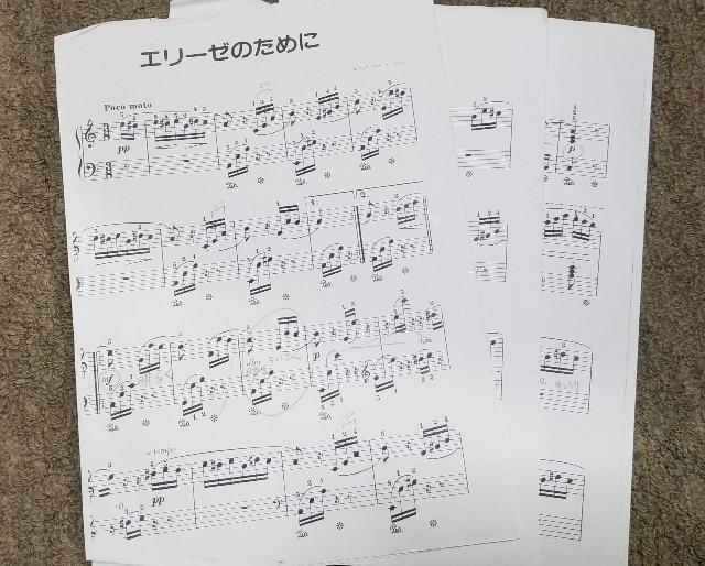 f:id:yuri89:20180910214435j:image